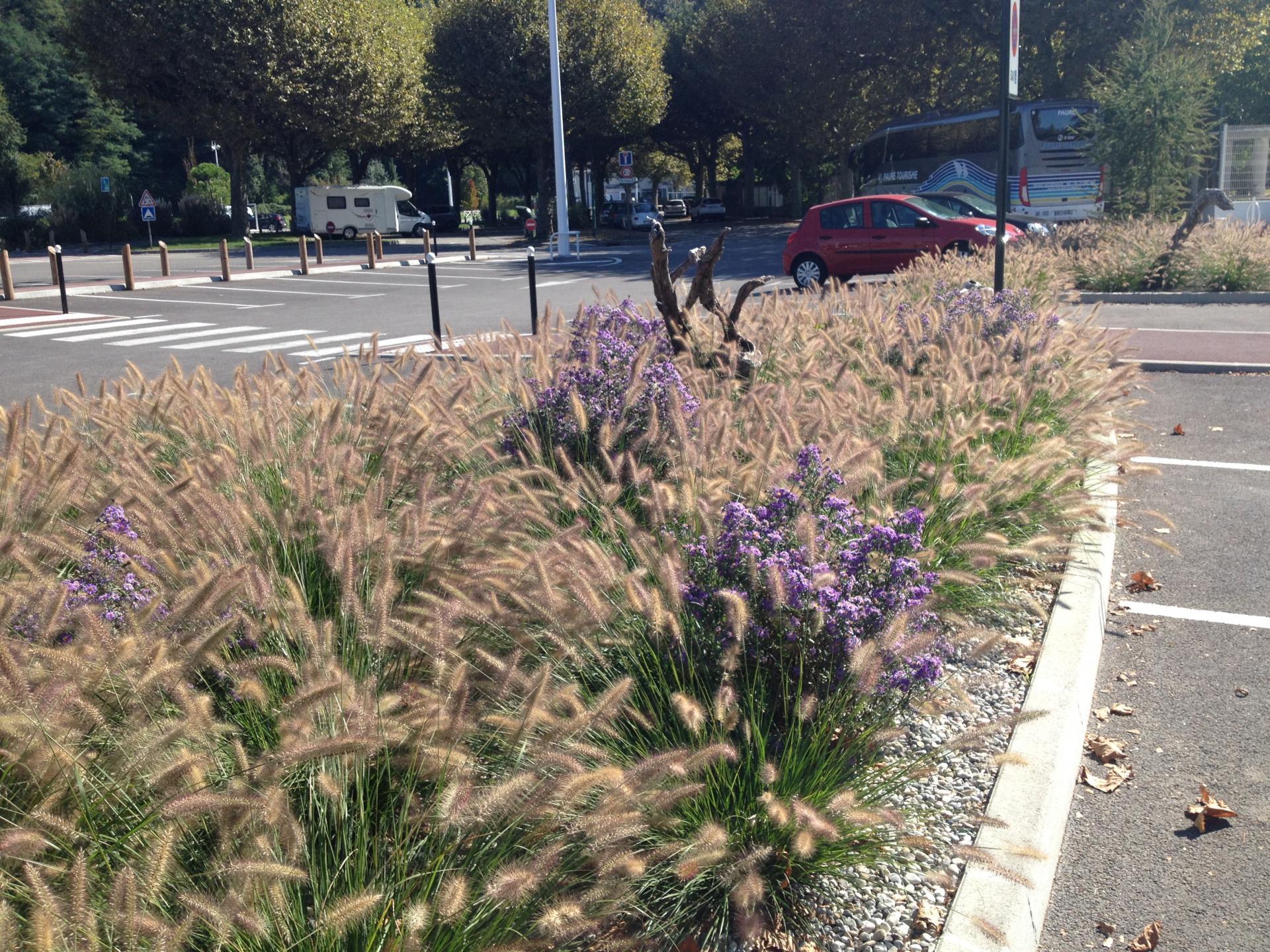 Aménagement paysager : attraits en automne