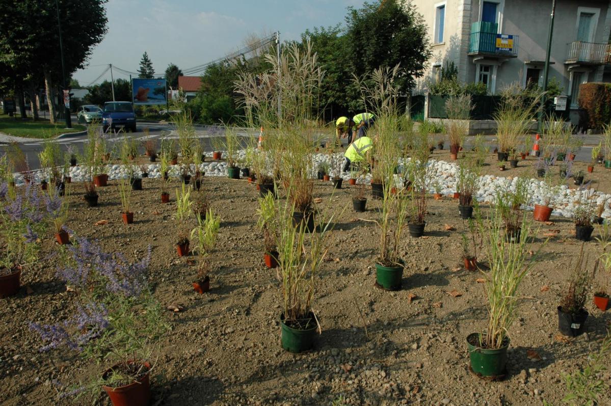 Rond point developpement durablec ret fleurissement raisonne 235